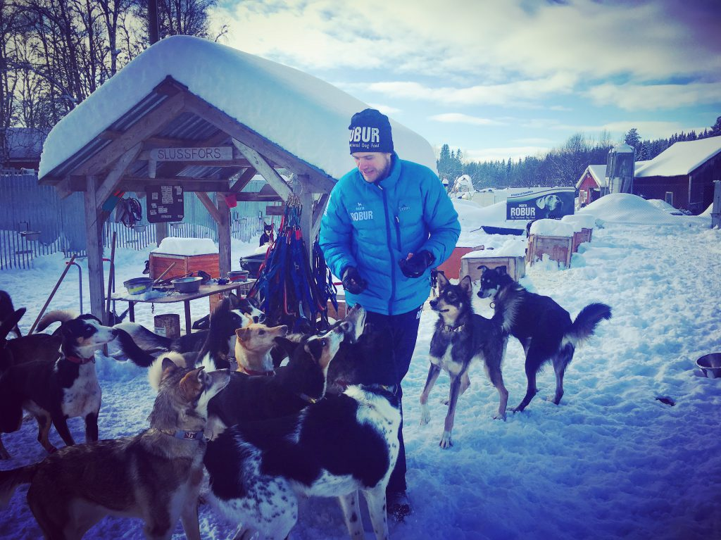 Petter-Karlsson-and his dogs